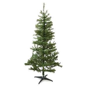 Reduced Christmas trees at Asda, starting at £10