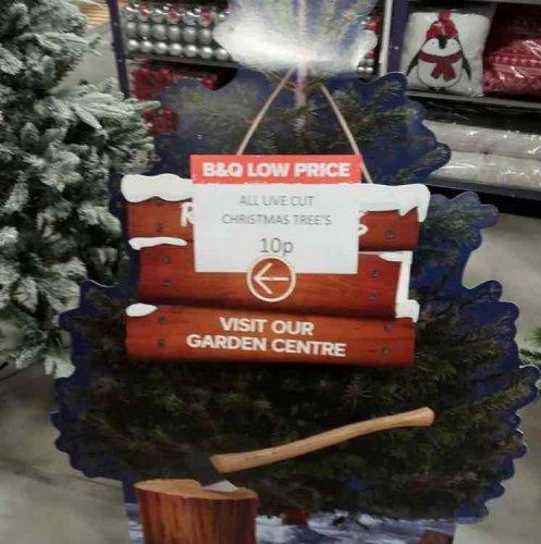 Christmas Trees down to 10p B&Q Camborne Cornwall