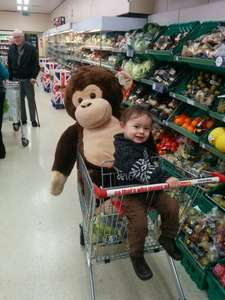 Giant Monkey Teddy £30 Iceland