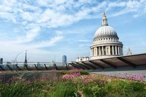 One New Change Roof Terrace - great views of London for free - 6AM-midnight daily