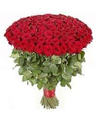 100 Roses for £25 @ Aldi available instore from 11th Feb