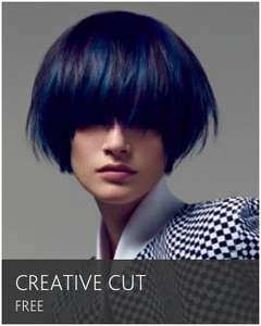 Free Creative Haircut at the Vidal Sasson Academy (or £3 for classic haircut) London