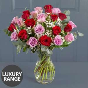Mixed Roses luxury range Moon pig