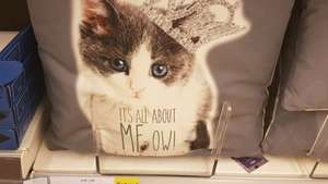 it's all about MEow Cushion Reduced Tesco Stalybridge now 1.50