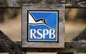 Free Bake for Nature pack from the RSPB