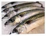 Asda fish counter whole mackerel £1 a fish
