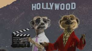 Get 1 year of 2 for 1 meerkat movies for under £3