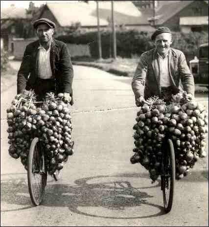 10kg UK Onions £2.50 @ Asda