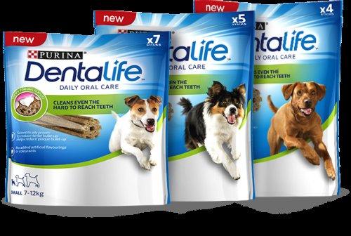 free dentalife purina dog chew sample