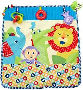 Fisherprice on the go activity throw add on item £3.09 @ amazon.co.uk