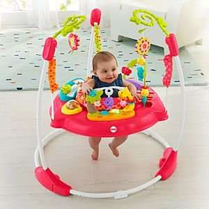 Fisher Price Pink Petals Jumperoo £74.99 with free delivery at Toys R Us