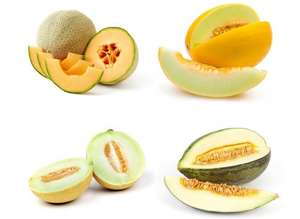 Whole Melons (Honeydew, Galia, Cantaloupe, Piel De Sapo Melon) £1 @ Morrisons