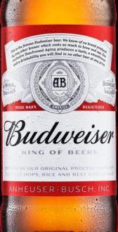 Budweiser 12 bottles 300 ml £6.99 @ LIDL