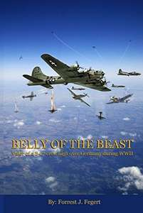 Belly of The Beast by Forrest J. Fegert: a fictional account of life as a WW2 ball turret gunner by the nephew of a WW2 ball turret gunner -  just become FREE on Kindle