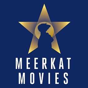 Meerkat Movies (2 for 1 Cinema) Codes for 1 Year - under £3
