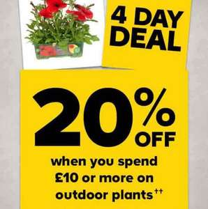 B&Q 20% off when you spend £10 or more on plants