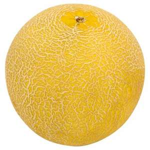 A huge Galia Melon for 69p in Tesco