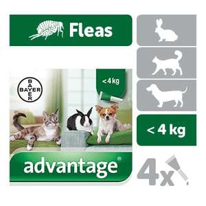 Advantage Spot on Flea Treatment for cats, dogs and rabbits - 3 packs of 4 pipettes each from £27.03 delivered. Dogs and others also available @ Petdrugstore