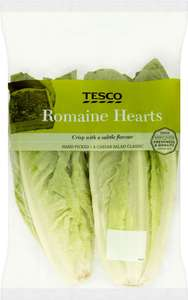 Romaine Lettuce Hearts (Pack of 2) was £1.00 now 49p @ Tesco