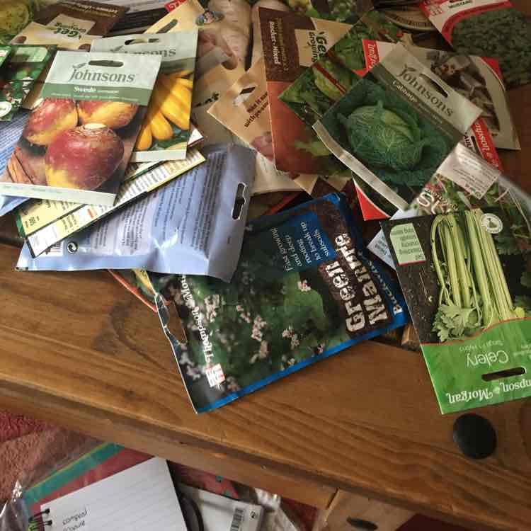 Wyevale Garden Centre Seeds 50p