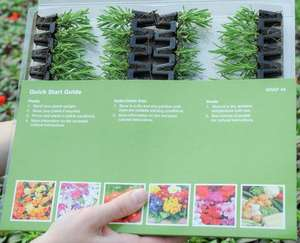 36 Perennial Lucky Dip Mix + FREE pair of snips - £5.00 from Thompson and Morgan
