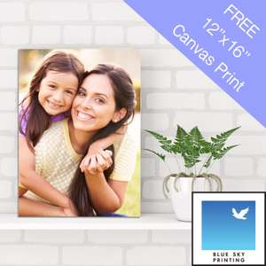 Free Canvas - First 50 Customers - Blue Sky Printing Colchester