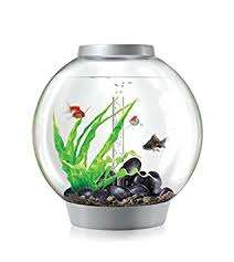 30 litre Biorb Classic (silver) with light and under gravel filter  £65 delivered at Pets at Home