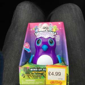 Hatchimals Wind-up Egglider with Lights and Sound £4.99 @ smyths toystore
