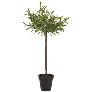 Artificial Green Bay Tree now £3.75 @ Dunlem (Click & Collect)