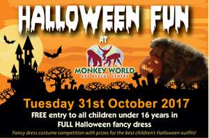 Free Entry on October 31st 2017 for All Children in Full Halloween Fancy Dress at Monkey World!