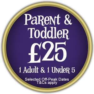 Alton Towers £25 ticket for adult and child (under 5)