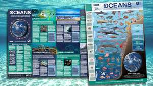 Free Oceans Poster from Open University