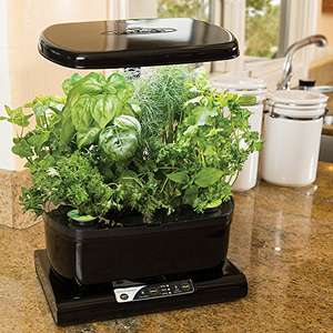 Miracle-Gro AeroGarden Harvest with Gourmet Herb Seed Pod Kit, Black ay Amazon for £49.99