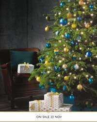 Nordmann Fir Christmas Trees (5ft, Medium £14.99 [from 26th Nov], 6ft, Large £19.99 [from 23rd Nov]) @ Aldi