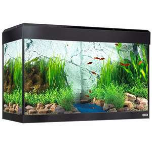 Fluval Roma 125L + matching stand £245 @ Pets At Home