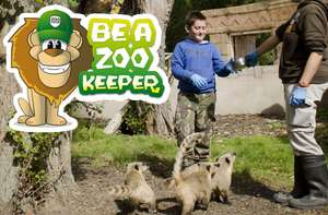 Be a Zookeeper for the day at Flamingo Land - Half Price (xmas gift?)