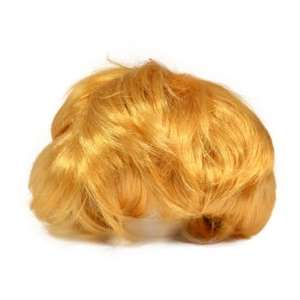 The Christmas present you always wanted!! .....A Donald Trump Wig for only £2.99 delivered @ Internet Gift Store