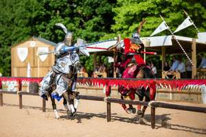 Hotel Stay + 2 Days worth of Tickets + Breakfast + FREE parking + War of the Roses Event (selected dates) from just £24.50pp (Based on a family of 4) @ Warwick Castle