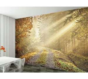 1Wall Winter Forest Road Wall Mural + others £10.50 @ Argos C&C