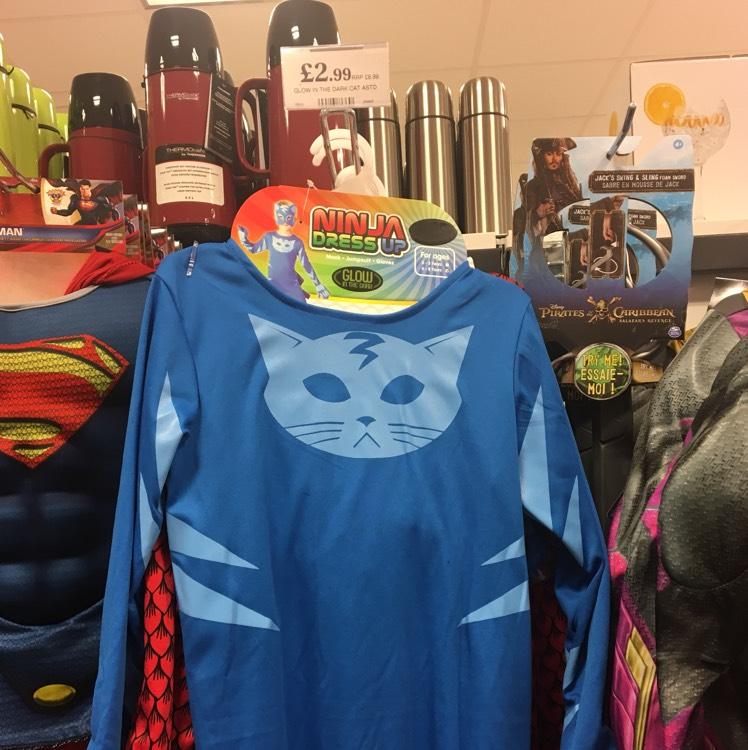 Ninja dress up - Home Bargains - 2.99 (similar to Catboy / PJ Masks - others available)