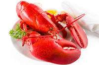 Whole lobster instore at Tesco for £3.90 (2 tails for £6.50)