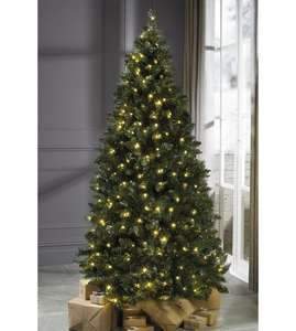 6FT Luxury Green Pine Tree - Pre-lit Now £39.99 + £5 P&P delivery before Christmas @ Studio