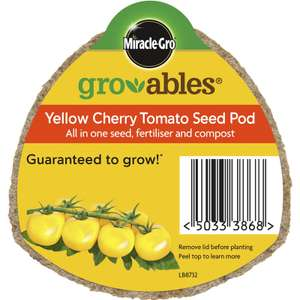 All in one yellow cherry tomato grow at home £0.25 at Homebase