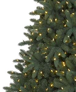 Real Xmas trees £6 intore at the range