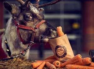 A Free Carrot for Rudolph at Morrisons