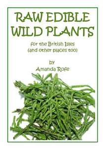 Raw Edible Plants for the British Isles Amazon Kindle ebook 99p
