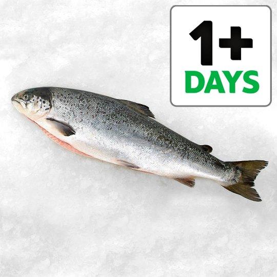 Tesco whole salmon half price £5.50