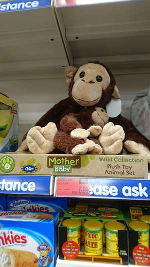 Wild collection mother and baby reduced in store @ b&m Bromborough for £6.99