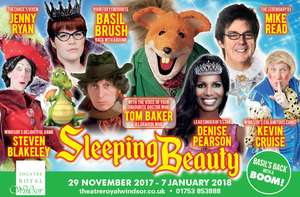 Windsor royal theatre panto tickets £15!
