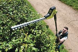 Ryobi RPT4545M Pole Hedge Trimmer with Extension Pole, 450 W - Green/Black £74.99 @ Amazon